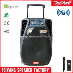 Feiyang 15 인치 HiFi 마이크 SL15-02를 가진 직업적인 Karaoke 스피커
