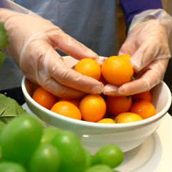 TPE desechables, CPE guantes para el servicio de comida