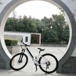 Città classica della bicicletta delle donne dell'Olanda 26 della bici della città della bici della città delle donne retro che fa un giro della signora Bike della bici