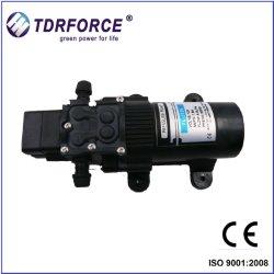 12V de MiniPomp van gelijkstroom voor het Bespuiten van de Tuin of de Watervoorziening van het Huishouden