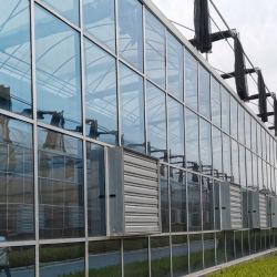L'isolation/couche unique/verre durci/intelligent pour fleur ou de légumes de serre/fruit/plantation/Ferme/aquaculture/l'élevage/Restaurant écologique