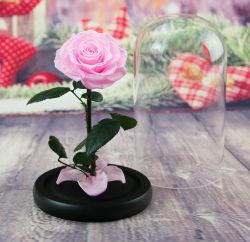 2019 Accueil Décoration de mariage de conserves de fleur pour petit cadeau