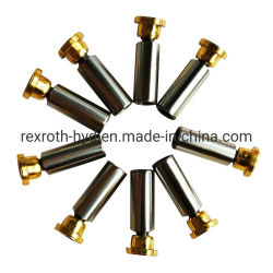 Blocco cilindri idraulico del kit/della pompa di carica dei pezzi di ricambio/guarnizione di riparazione/piatto valvola/del pistone/piatto Swash/asta cilindrica di azionamento/cuscinetto per Rexroth A2f/A4V/A6V/A7V/A10V/A11V