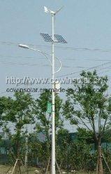 Wind Solar Hybrid Light (CS-WSL-01)