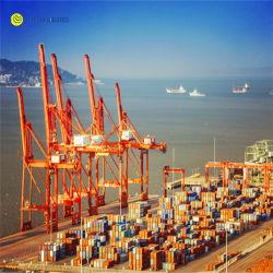 O frete marítimo da Shenzhen Guangzhou Xiamen Xangai China à Coreia do Norte do Japão
