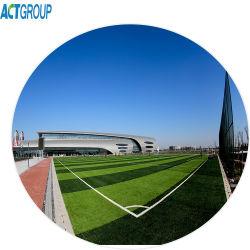 Labosport Fifa 잔디 50mm 축구 인공적인 잔디 X50e에 의해 증명하는