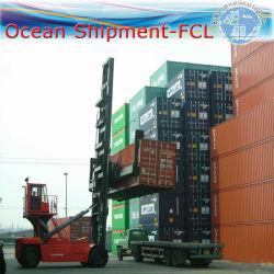 De logistische Dienst van de Uitvoer (Pakhuis, Inklaring, Ladende container)