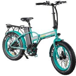 El peso de la luz de 500W bicicleta eléctrica plegable con pedales
