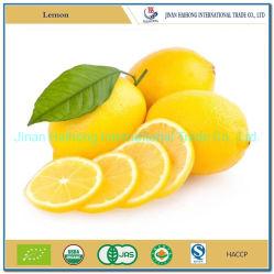 Fruta fresca DE LIMÓN Citrus amarillo limón fabricado en China
