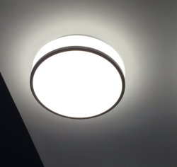 9inch円形の表面のアクリルの天井の台紙LEDランプ