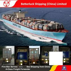 Fracht-Logistik-Verschiffen-Service von Nansha China Fremantle Australien zur Zahnstange