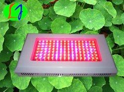 Leiden van nieuwe Producten 55*3W kweken Lichte LEIDENE 120watt het Groeien Lamp voor BinnenHuis