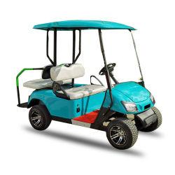 도로 배터리 전원을 사용하는 실용적인 소형 전기 공항 골프 2 륜 마차 손수레 떨어져 2 Seater