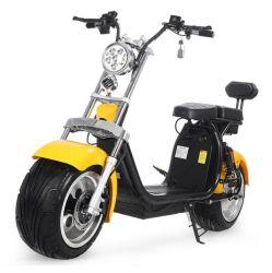1500W/2000W/3000W LCD 리모콘 지방용 타이어 탈착식 리튬 배터리 해리 CCE/EEC/Coc 인증을 획득한 Citycoco 전기 스쿠터 오토바이