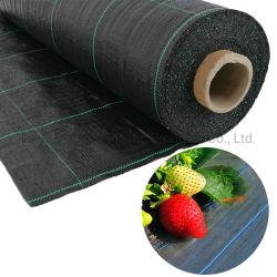 Рр тканого Geotextile/PP борьбы с сорняками коврик/сельскохозяйственных пластика с сорняками ткань