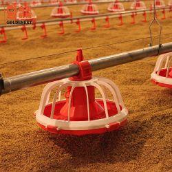 Goldenest Alimentador Automático de aves de capoeira Pan de frangos de corte do sistema de alimentação