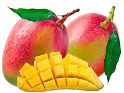 Uittreksel van het Zaad van de Mango van het Uittreksel van de Irvingia gabonensis van het Ingrediënt van het Gewicht van het verlies het Afrikaanse
