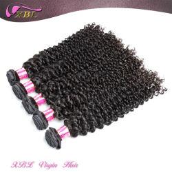 Cheveux naturel attrayant enchevêtrement des fils de trame libre Kinky mongol les Cheveux Bouclés