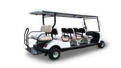 Elektrisches schwarzes Dämon-Verein-Auto-vorhergehende Golf-Karre