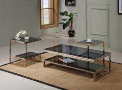 Vidro moderna mesa de café situado em aço inoxidável Sala Escura
