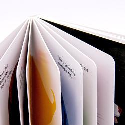 Kp Gros Livre en carton Kids Custom meilleur Harry Potter Le zoo de couleur du bébé à la carte de premiers mots de livres pour les tout-petits