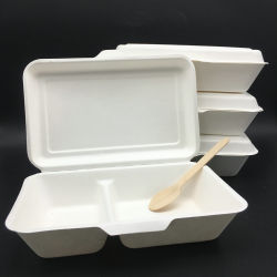 Biologisch Afbreekbaar Suikerriet 2 Compartiment Bento Disposable Take Away Lunch Box
