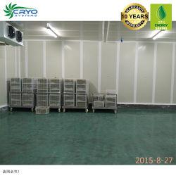 Portello scorrevole della stanza di conservazione frigorifera, cella frigorifera negativa industriale standard