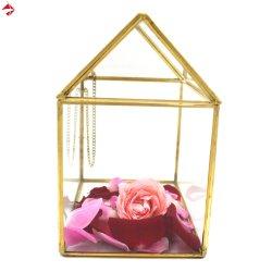 Витраж Дом Terrarium сеялку для использования внутри помещений садоводство сочные Мосс волшебная сад