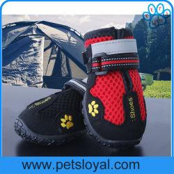 Установите противоскользящие прочная подошва ПЭТ с собакой обувь для походов