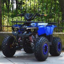 2019 Novo Mini ATV 125cc Kids Moto para venda ATV016
