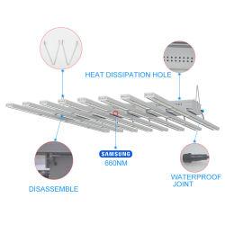 ETL Edk 실내 Hydroponic 온실 가득 차있는 스펙트럼 플랜트 램프 전구 지구 LED는 Microgreens 양상추를 위해 가볍게 증가한다