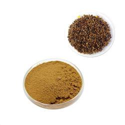 Extrait de fines herbes Aliments de santé Cassia extrait de graines en poudre