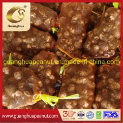 Frische Taro Gute Qualität Shandong Natural