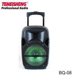 Temeishengの可聴周波カラオケ8インチのトロリー電池式のスピーカー