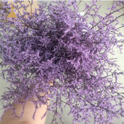 Préservé Caspia verts de remplissage de bouquets de fleurs rouge en organisant des projets