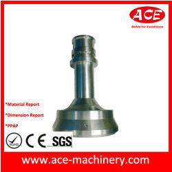 中国サプライヤ工場 SGS 監査の審査