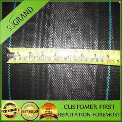 Plein de matériaux barrière de mauvaises herbes en polypropylène fraîches/ La couverture du sol en plastique