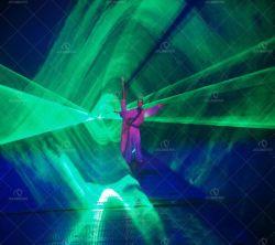 DMX 10W зеленого этапе лазера для DJ освещения