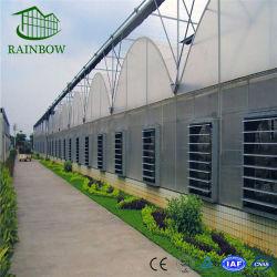 Patin de refroidissement et du ventilateur de refroidissement des systèmes de refroidissement à effet de serre