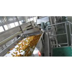 Linea Di Produzione Succo Estrattore Centrifuga Riempimento E Confezionamento Sterilizzatore