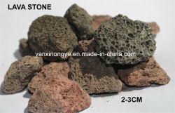 Lava-Stein verwendete LandschaftsSoilless Bearbeitungornamental-Produkte