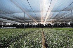 100% Personalizado de HDPE sombra agrícola Net, cerca de la pantalla, Parabrisas de privacidad