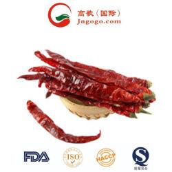 La nouvelle récolte de bonne qualité séché Tianying Hot Piment rouge piment chili Chaotian
