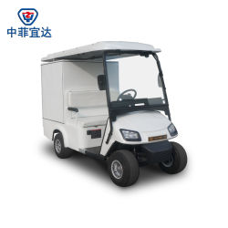 Zhongyi Brand Ce Approved Electric Vehicle Custom Made Car