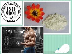 99% Lidocaine Hydrochloride/Lidocaine Hcl Pijnstillende Poeder 73-78-9