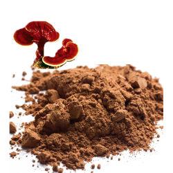 고품질 레드 링지 리시 버섯 추출물 라이시 스포어 파우더