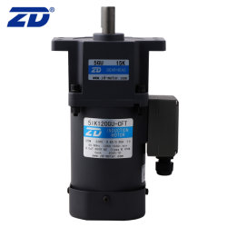 ZD 단상 고효율 110V/220V 120W 전기 유도 AC Strength10 Type Shaft가 장착된 기어 모터