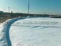 Polyester géotextile non tissé de fibres longues pour le paysage Engineering