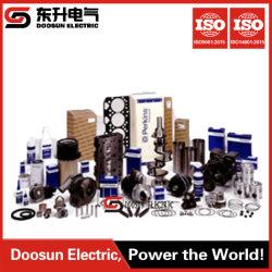 Motor diesel parte do conjunto do gerador de acessórios disponíveis de tipos de Differend