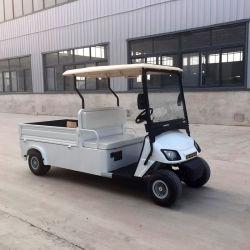 Zhongyi Fabrik-heißer Verkauf 2 Seater elektrischer Golf-Ladung-LKW